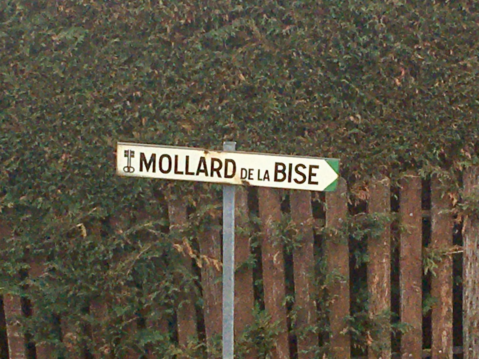 Mollard-de-la-Bise-2020-03-12-16-12-57 3
