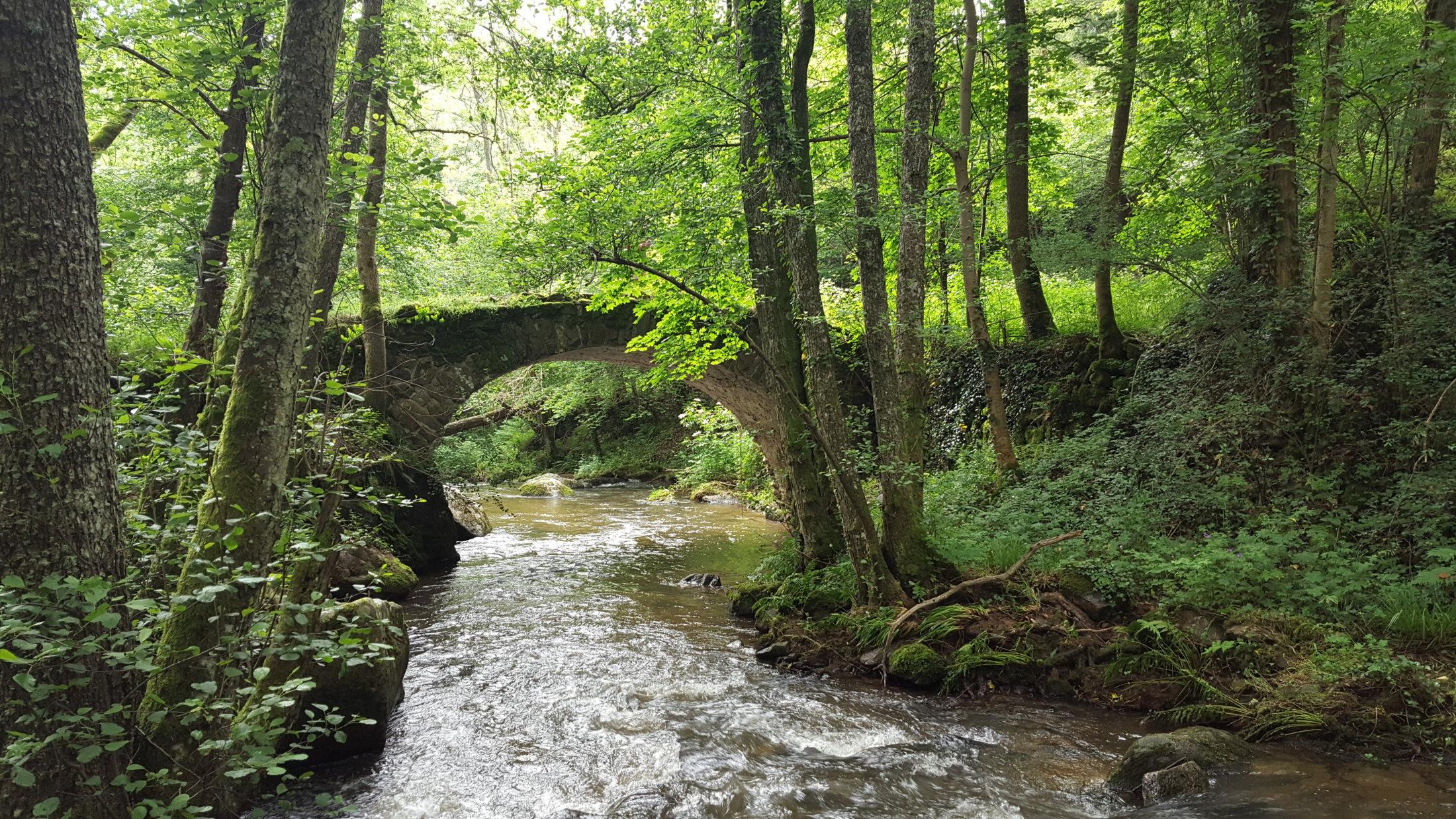07 Pont De Riberolles Sur La Monne