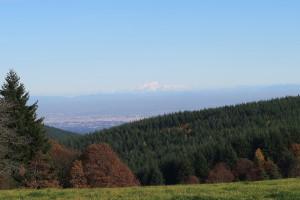 Mont Blanc en fond de paysage
